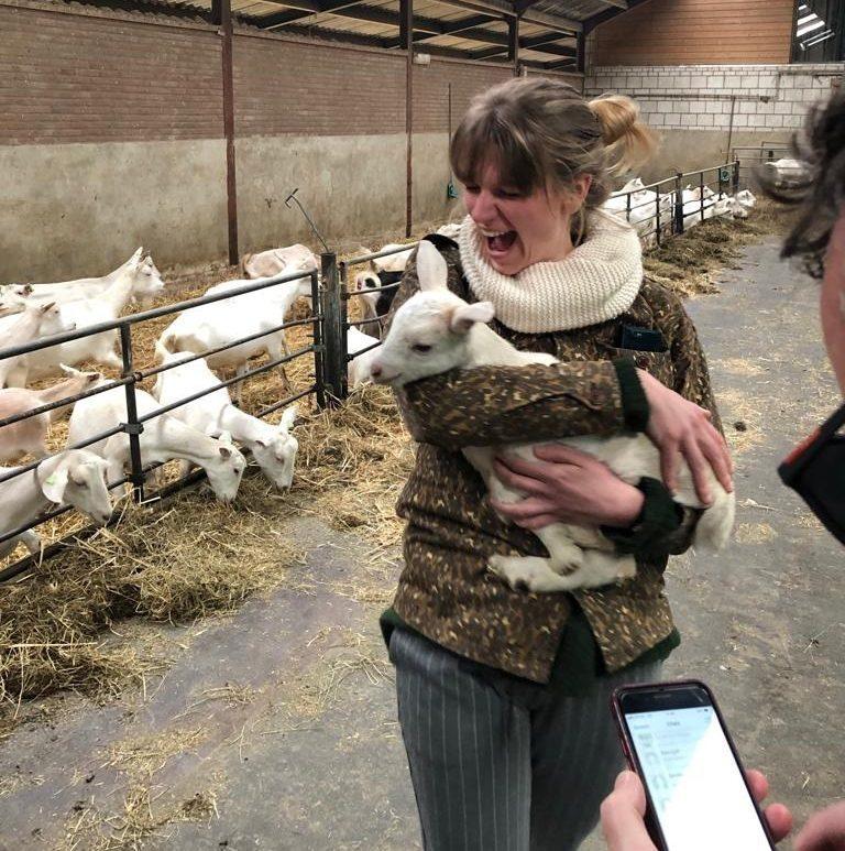 Rondleiding geitenboerderij